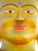 Closeup vibrant gold Shanti Ban Buddha face, 25 feet tall golden Buddhas image on a sunny day in Dh poster
