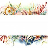 Watercolor Border With Ships Wheel And Coral Reef Plants. Hand Painted Seaweeds, Shells And Starfish poster
