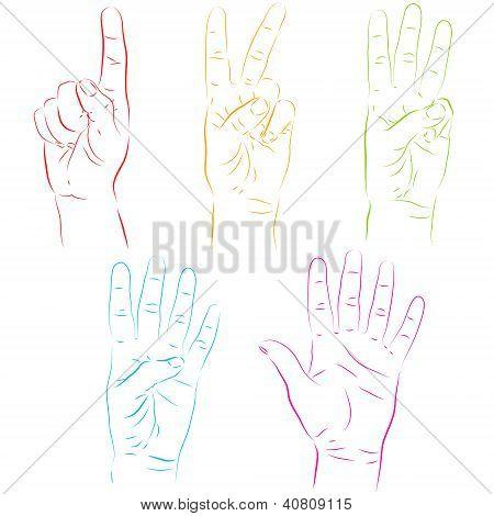 Human Hands Make Numbers
