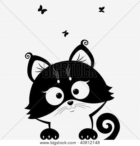 kitten black
