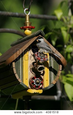 Chickadee Perched On A Birdhouse