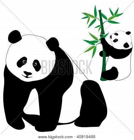 Set Of Cute Panda Bears With Bamboo