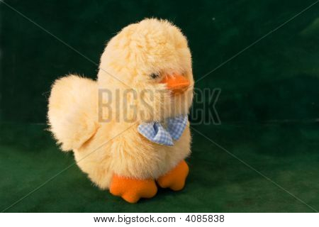 Furry Chicken