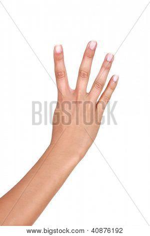 Quatro dedos