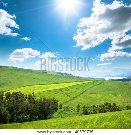 green fields against sunshine in the blue sky