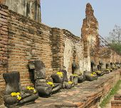 pic of beheaded  - Row of Buddhist statues beheaded by Burmese army in Ayutthya Thailand - JPG