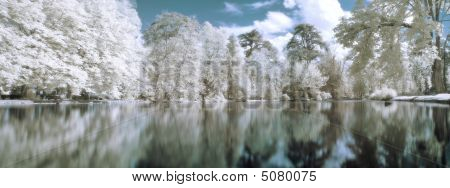 Infrared Panoramic  Landscape