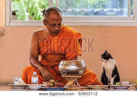A buddhist monk protects his lunch  from a cat in a temple.
