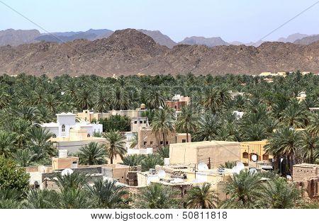Nizwa Oasis, Oman