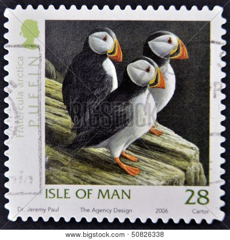 Isle Of Man - Circa 2006: A Stamp Printed In Isle Of Man Shows Puffin, Fratercula Arctica
