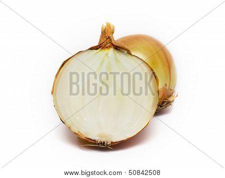 Onion On White Background