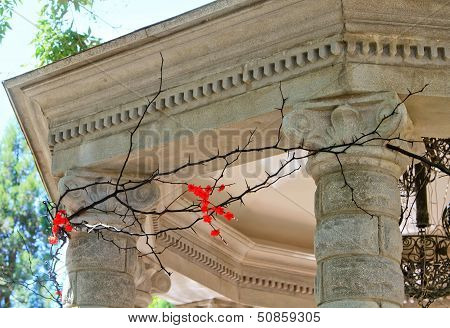 Fragment Of The Rotunda With Columns Strung With Acacia Thorns