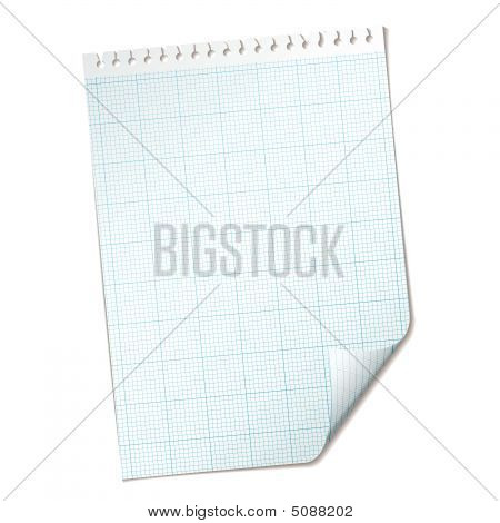 Ripped Sheet Grid