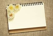 Notebook With Asters