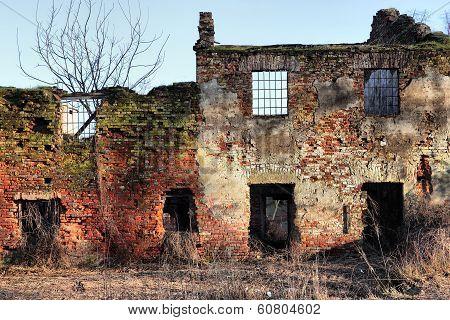 Old Farm Ruin