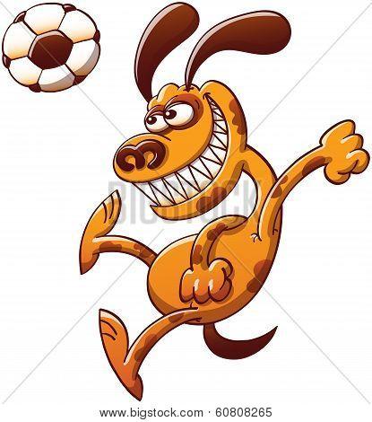 Brave dog heading a soccer ball