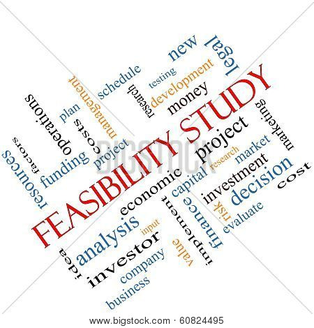Feasibility Study Word Cloud Concept Angled