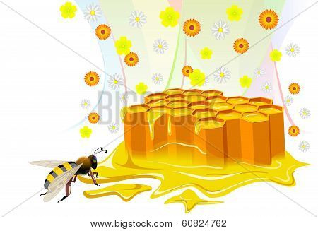 Bee And Honeycomb With Floral Honey.