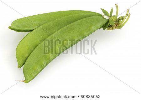 Sugar pea pod