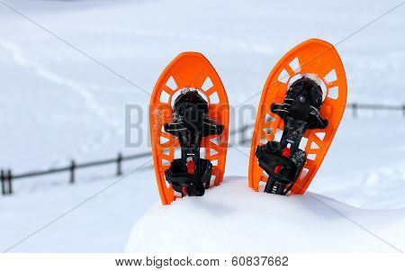 Isolated Snowshoes For Walking On The Snow On The High Mountain In Winter