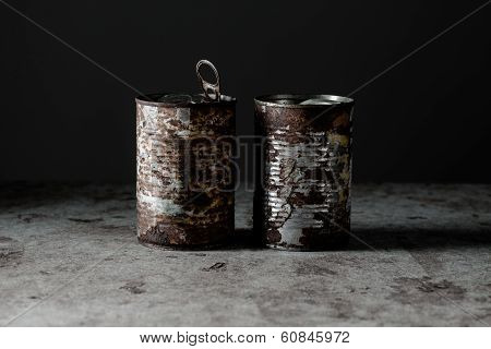 Two Rusted Cans