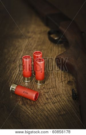 Shotgun Ammunition on Wodden Floor