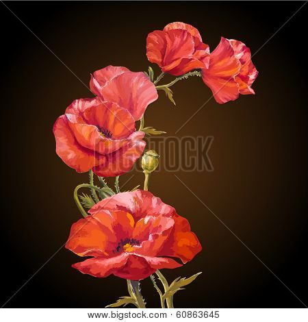 Oil painting. Card with poppies flowers on dark background.