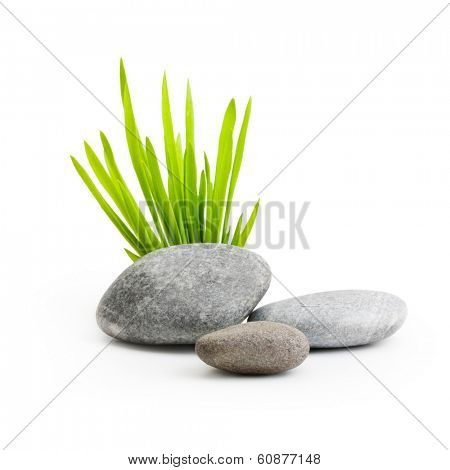 Stones with grass isolated on white background.