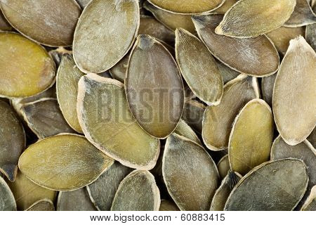 Raw  Shelled Pumpkin  Seeds