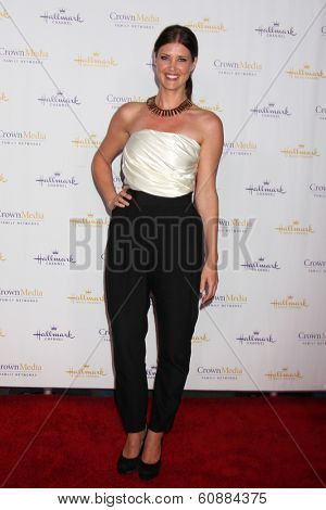 LOS ANGELES - JAN 11: Sarah Lancaster at the Hallmark Winter TCA Party at The Huntington Library on January 11, 2014 in San Marino, CA