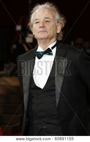 LOS ANGELES - MAR 2:  Bill Murray at the 86th Academy Awards at Dolby Theater, Hollywood & Highland on March 2, 2014 in Los Angeles, CA