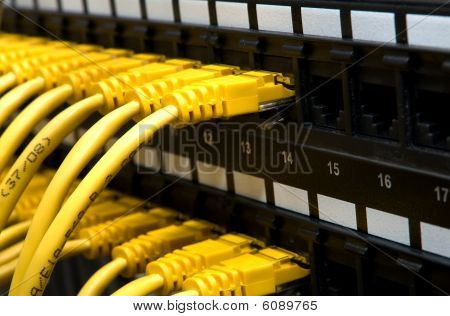 Yellow Network Cables