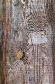 Rough Wooden Plank Visible Discoloration Knots