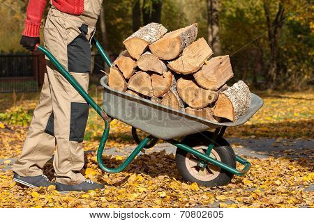 Wood On Borrow