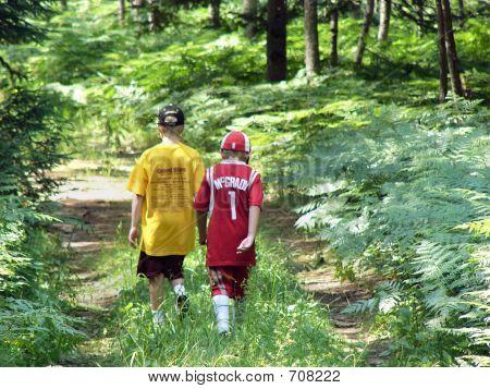 Boys Walking In The Woods