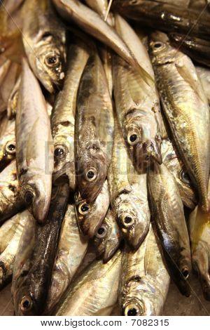 Sardinas On Food Market