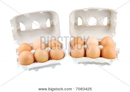 Twelve Brown Eggs Packed In Carton Boxs