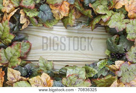 Autumn foliage border on wood door