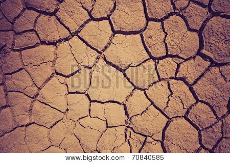 Dry soil during the drought