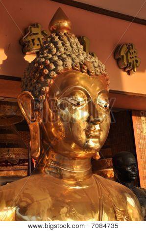 Buddha Brass Head Face Flank