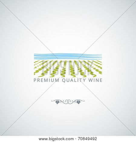wine field background