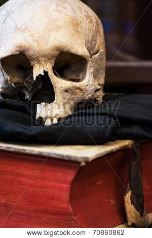 Human Skull And Old Book