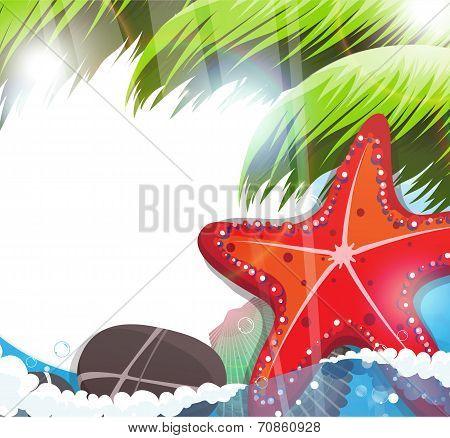 Tropical Sea Life.