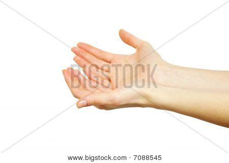 Hands Begging Alms