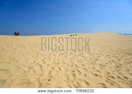 PILAT, FRANCE - JUNE 27, 2013: People walk on the dune of Pilat. This dune is the biggest one in Europe, and it still grows