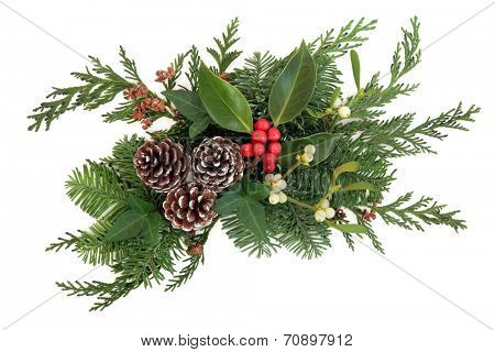 Christmas and winter decoration  with holly, mistletoe, fir and cedar leaf sprigs  with pine cones over white background.