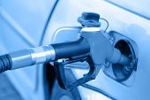 stock photo of gasoline station  - Putting gasoline in vehicle  - JPG