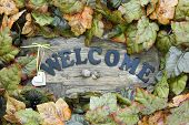 pic of acorn  - Old wood welcome sign with hearts - JPG