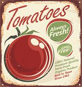 foto of tomato plant  - Tomatoes vintage metal sign  promotional design concept - JPG