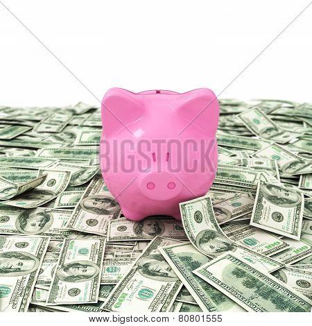 Money Dollar Dollars Business Money Box Pig Credit Bank Savings